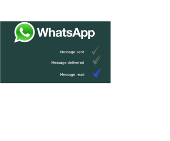 Comment bloquer un contact sur WhatsApp ?