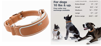 10 Best Pet Tracking Devices 2018 - GPS Trackers for Dogs and Cats
