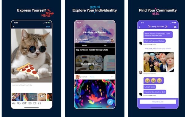 Tumblr popular social media app for teenagers and effects 8
