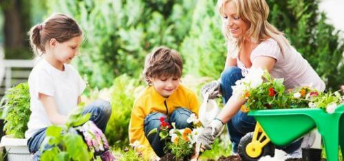 Fun Outdoor things for teen - Gardening