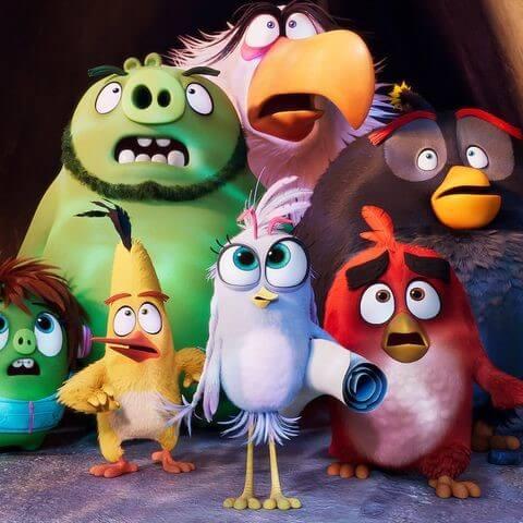 The angry bird's movie